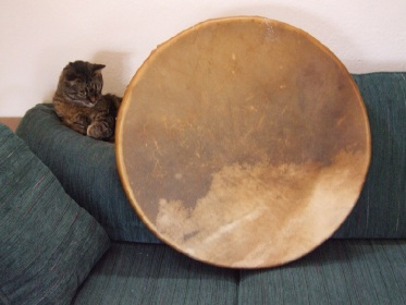 Large Buffalo Rawhide Drum with cat
